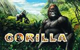 Автоматы на деньги Gorilla